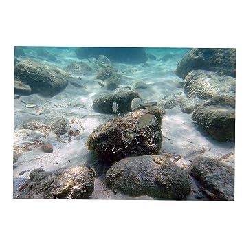 D DOLITY Fondo de Acuario Decoraciones de Tanque de Pescados Accesorios Duradero - Estilo 17, S: Amazon.es: Hogar