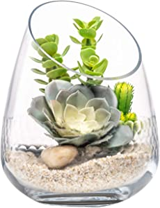Diamond Star Clear Glass Slant Succulent Plant Vase, 8.5 inch Large Candle Sconces Decorative Storage Jars for Home Decor Dining Living Room Wedding Centerpiece Party Housewarming
