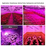 LED Grow Light Panel 300W Full Spectrum with IR Veg & Bloom Dual Mode JCBritw Plant Growing Lamps Aluminum Made with Daisy Chain for Indoor Planting Hydroponic Greenhouse Seedling Veg & Flower