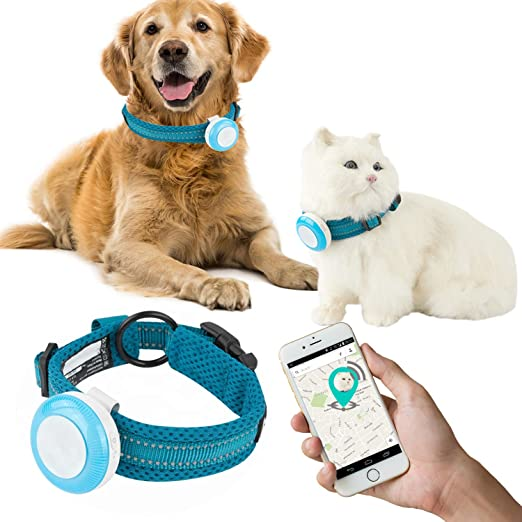 Amazon Com Talis Us New Gps Pet Tracker Waterproof Smart Wifi Mini Portable Pet Anti Lost Gps Collar Tracking Device Safety Alarm Safe Geo Fence Smart Or Cats Dogs With App For Iphone Android