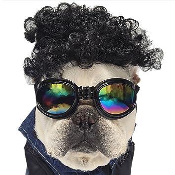 Gafas De Sol Para Perros, Legendog Dog Eyes Wear Correa ...