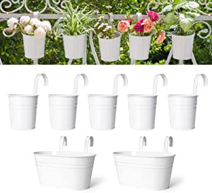 Dahey 4 Inch Hanging Flower Pots Metal Iron Bucket Planter for Railing Fence 5 Pcs and 2 Pack Hanging Balcony Planter Window Flower Plant Holder with Detachable Hooks Garden Home Decor,5 Inch,White
