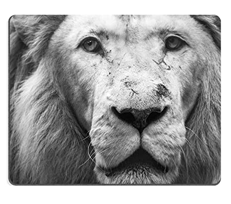 Yanteng Tony Natural Rubber Mousepad Lion