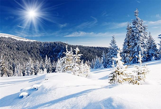 9x6ft Tranquil Village Snowy Pine Forest Backdrop Polyester White Snowfield Frosty Trees Snowy Cabin Remote Mountains Sunset Glow Photography Background Winter Snowscape Child Baby Adult Shoot