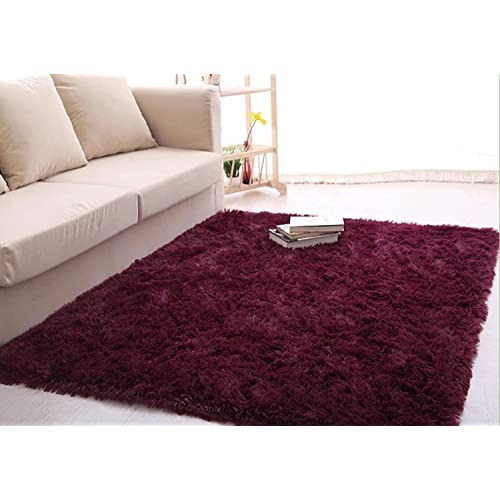 Living Room Rug: Amazon.com