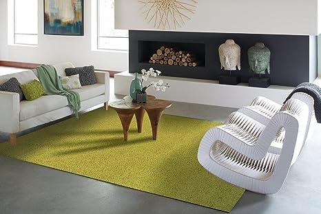 Amazon.com: Luxury Shag Rug Solid Green Area Rugs Shag Rug For ...