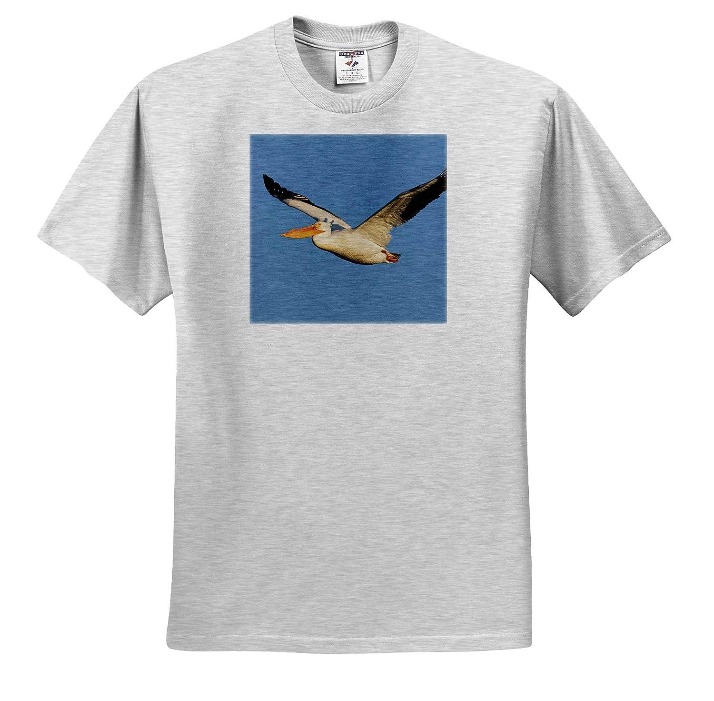 American White Pelican ts/_313970 Adult T-Shirt XL 3dRose Danita Delimont Birds