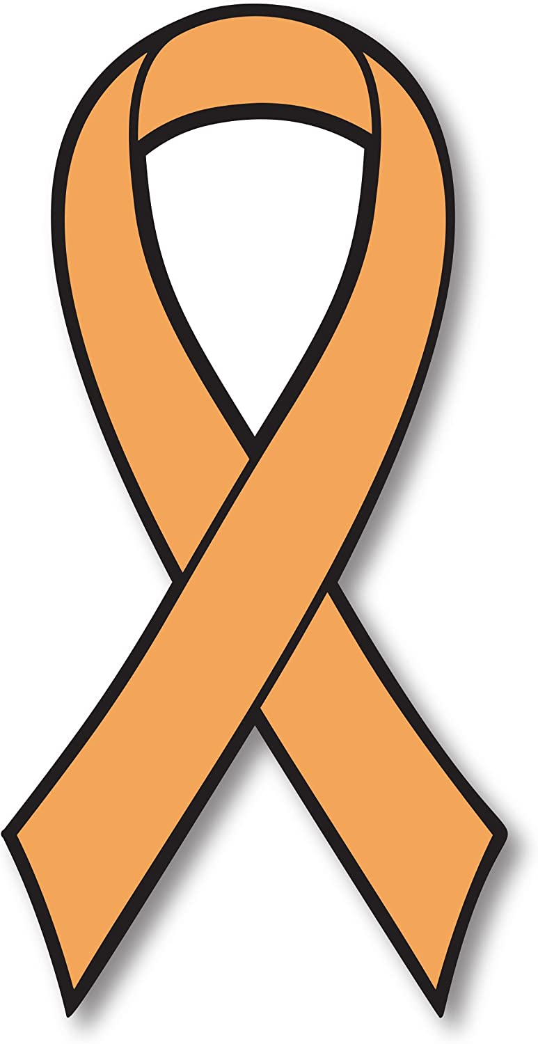 Orange Leukemia and Kidney Cancer Fighter Ribbon Car Magnet Decal Heavy Duty Waterproof