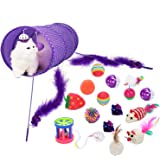 Legendog Cat Toys 17PCS Kitten Toys Cat Catnip Toys Cat Balls Cat Feathers Wand Cat Kitten Interactive Mouse Toys Set for Indoor Kitty and Cats