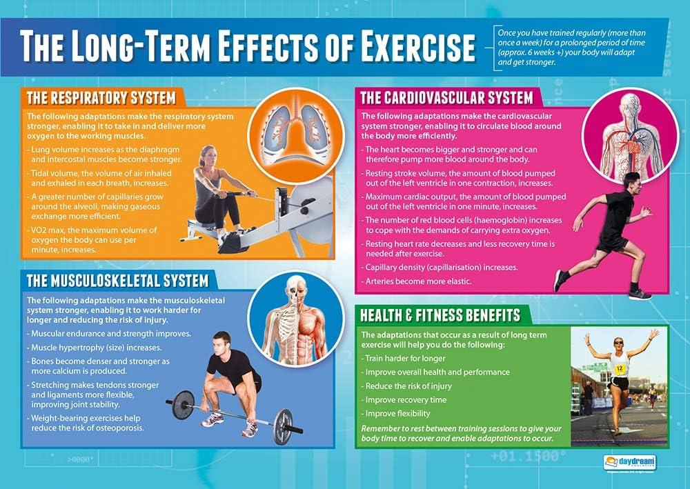 YOGA ASANAS Professional Fitness Health Club Gym Wall Chart POSTER