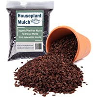 Organic Houseplant Mulch - Very Fine Pine bark Wood Chips for Indoor and Patio Plant Soil Covering - 2 quarts
