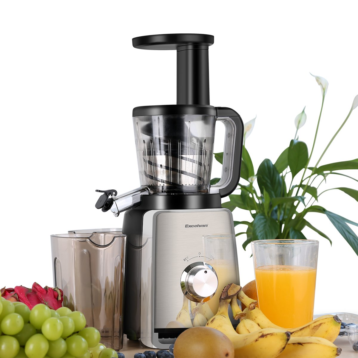 Excelvan 1000W Professional Slow Juicer for Max Nutrient Fruit Vegetable Juice Extractor with Dual Spouts and Two Containers FUDISI Tech
