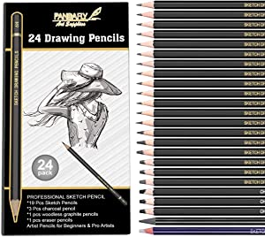 Professional Drawing Sketching Pencil Set - 24 Piece Artist Pencils Kit Includes Graphite, Charcoal and Eraser Pencils(7H-14B), Shading Graphite Pencils for Adults Kid Beginners Pro Artists