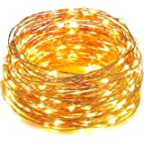 HAHOME Waterproof Led String Lights,33Ft 100 LEDs Indoor and Outdoor Starry Lights with Power Supply for Christmas Wedding and Party Decoration,Warm White