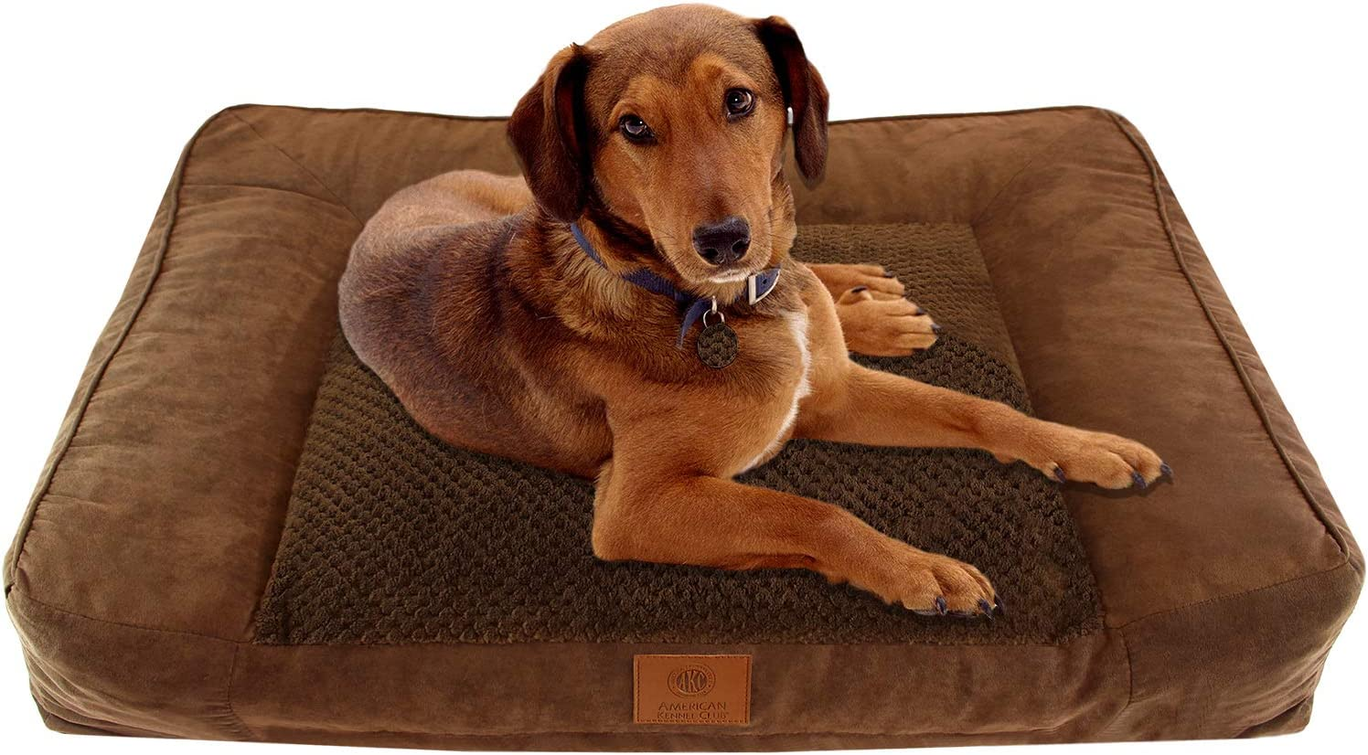 American Kennel Club Orthopedic & Memory Foam Couch Sofa Style Pet Bed w/Removable Cover for Cats & Dogs