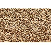 Gw White Wheat Malt (10 lb)