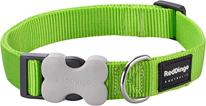 Colorful Puppy Red and Green  Dog Collar Red and Green Dots,Holiday