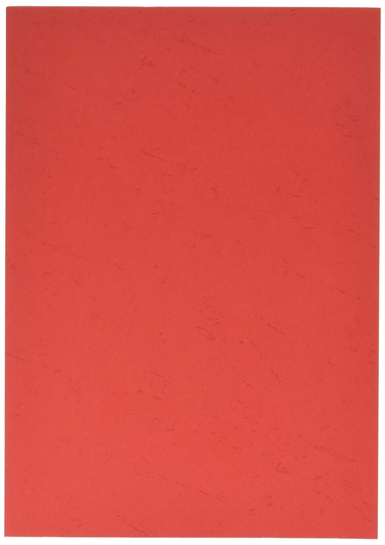 Rainex 565 RG 100 Couvertures A4 270 g Rouge