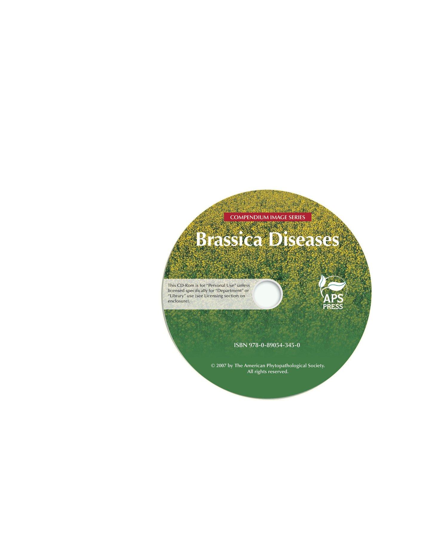 Download Compendium of Brassica Diseases Image CD pdf epub