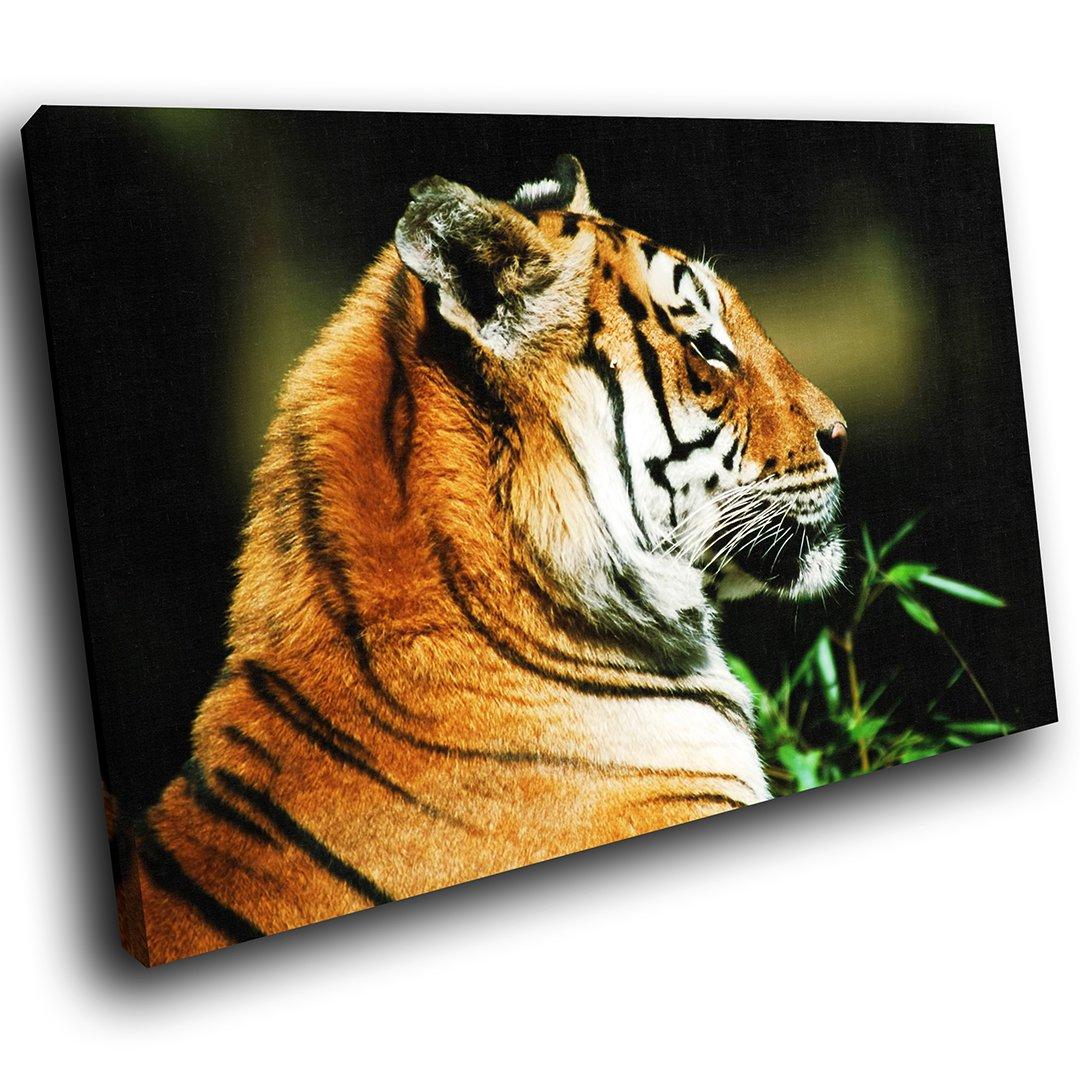 AA085E gerahmte Leinwanddruck bunte Wandkunst - orange Tiger Wald ...
