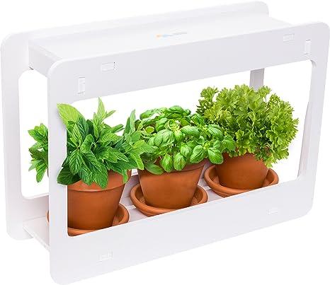 Amazoncom Mindful Design Led Indoor Herb Garden At Home Mini