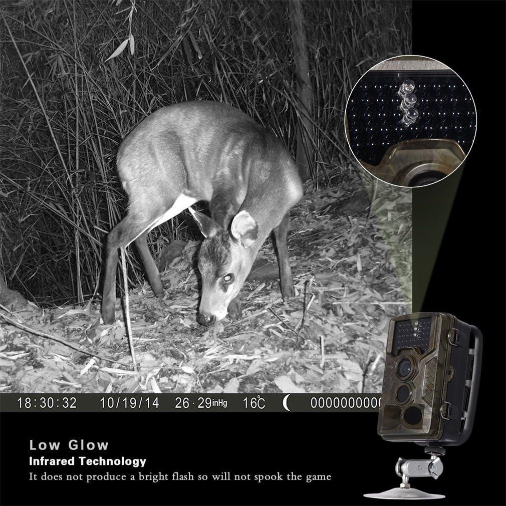 OUTAD Trail C/ámara 2,4 /″ TFT LCD de La Vida Silvestre de La Pantalla de La C/ámara 20 Metros de Visi/ón Nocturna 120 Grados Granangulares Impermeables Para Cazar Scouting