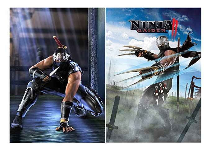 Set of 2 Ninja Gaiden Posters [Importación Inglesa]: Amazon ...