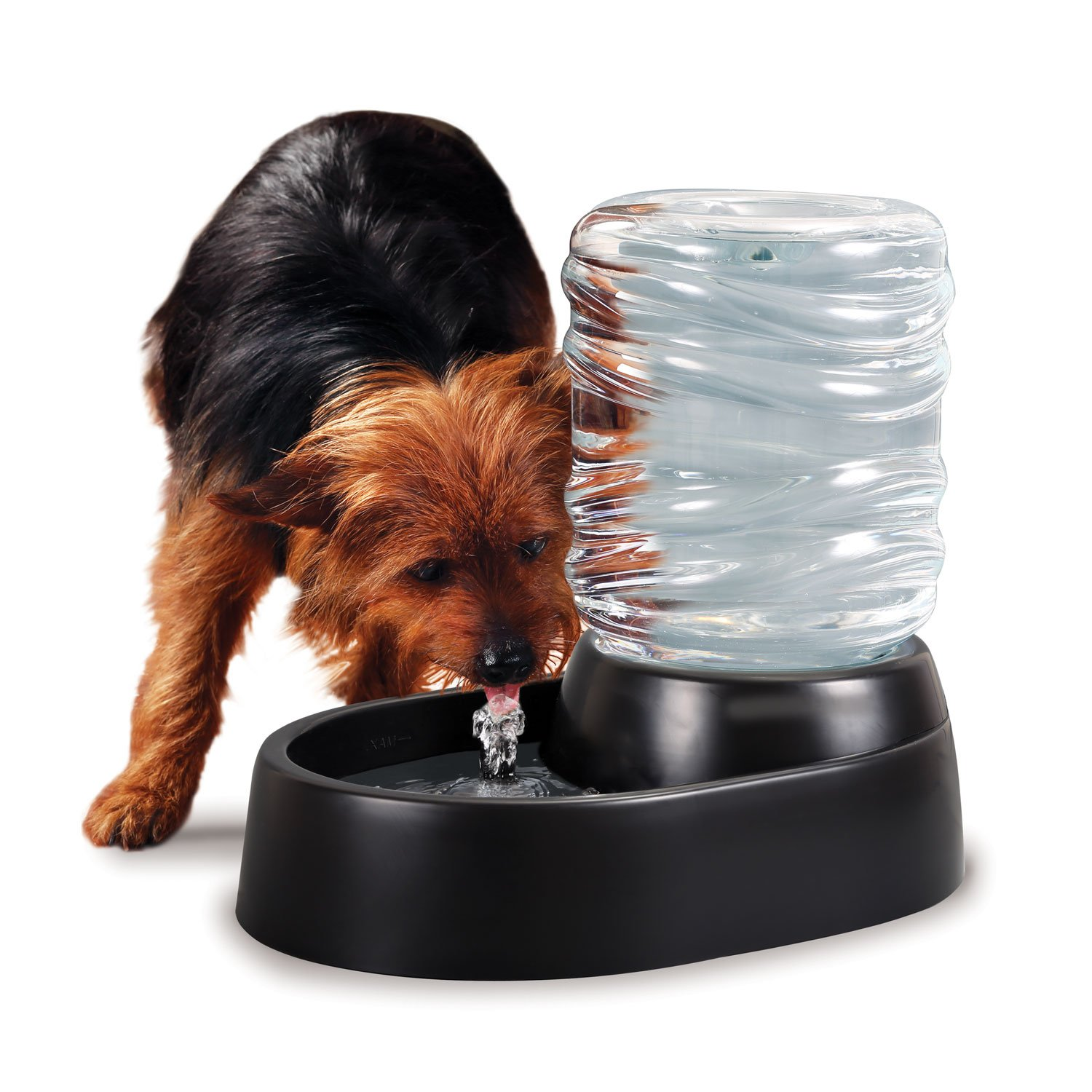 Ideas In Life Cat Dog Pet Water Dispenser - Electric Drinking Fountain - Water Feeder Drink Reservoir Bowl Bubbling for Large Medium Small Pets