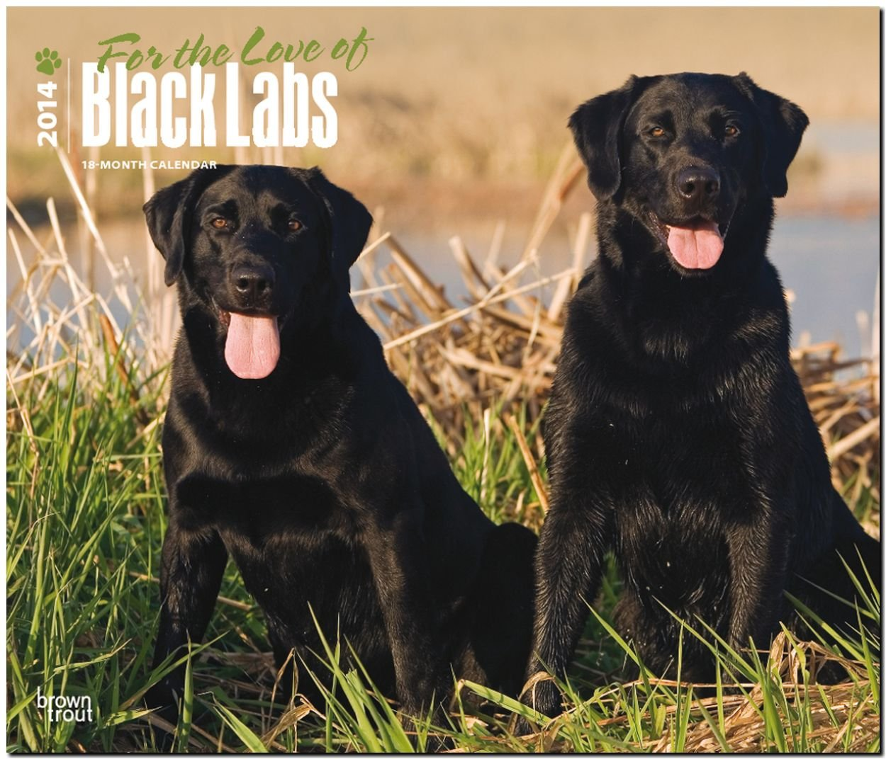For the Love of Black Labrador Retrievers 2014 18-Month Calendar (Multilingual Edition) PDF