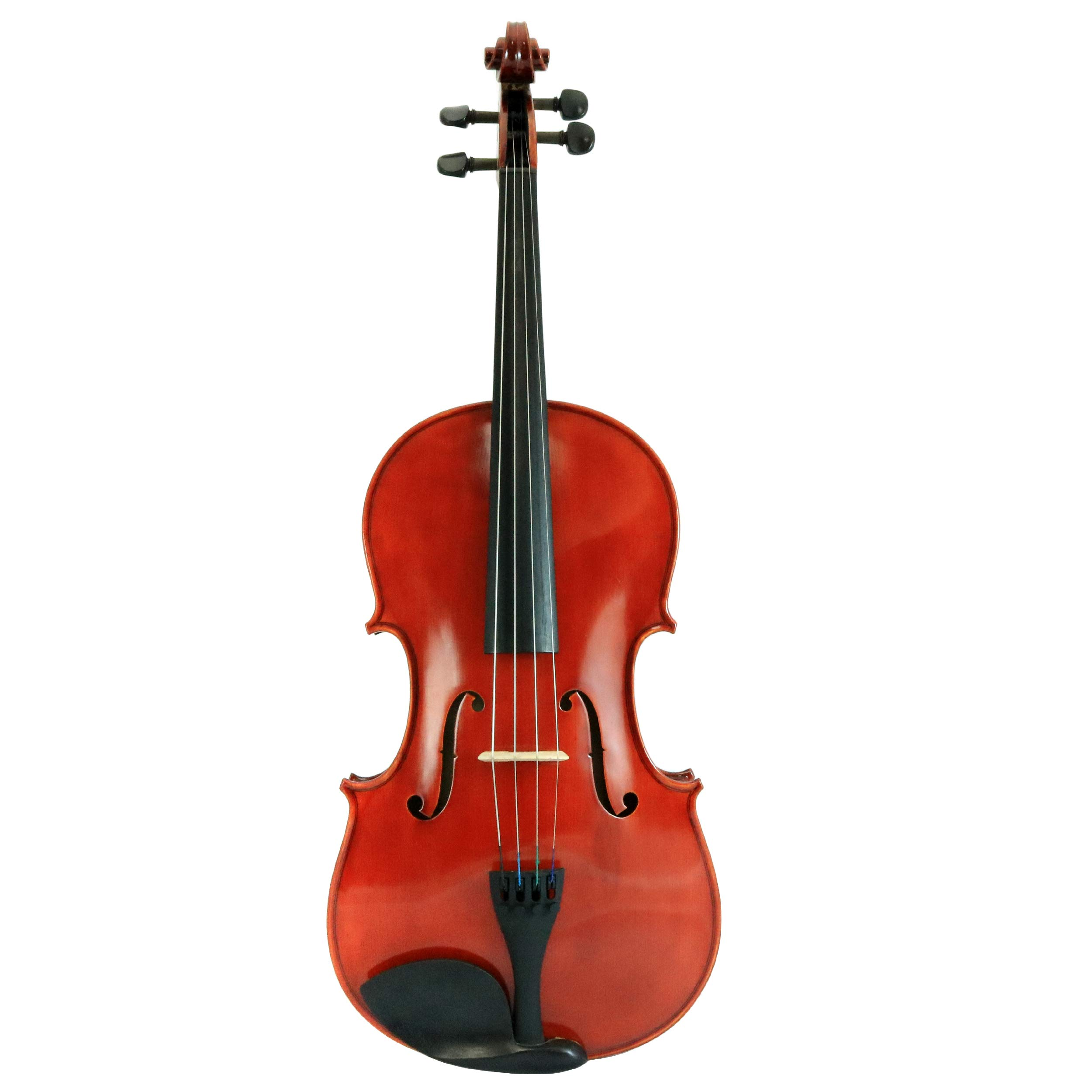 D'Luca PDZ02-14 14-Inch Orchestral Series Viola Outfit by D'Luca
