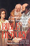 Bible History: A Textbook of the Old and New Testaments for Catholic Schools