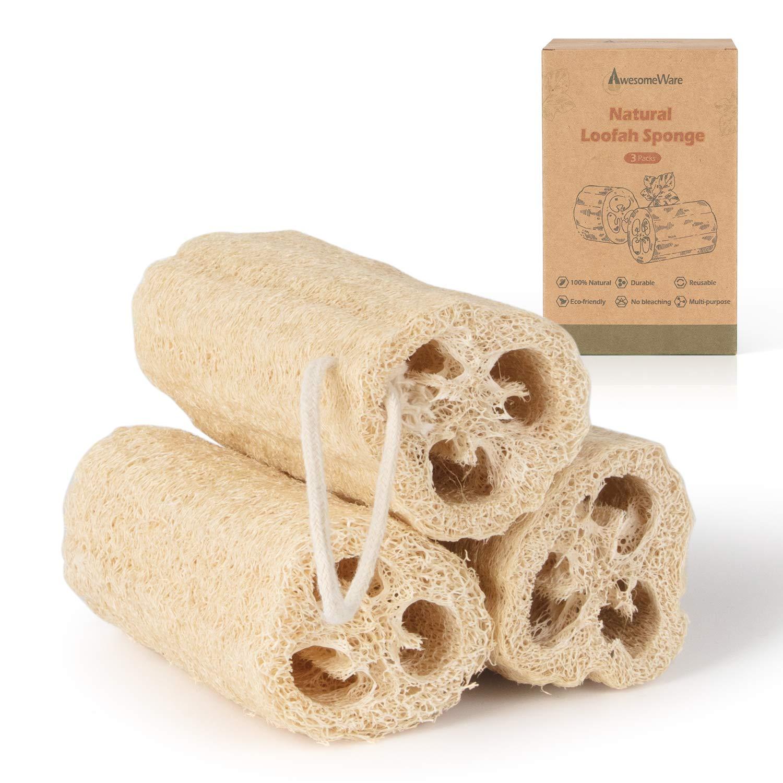 Amazon.com: Natural Loofah, 100% Organic Shower Loofah Sponge Exfoliating  Loufa Sponge, Bath Body Scrubbers for Removing Dead Skin, No Bleaching &  Eco Friendly Skin Care - 3 luffa Pack: Beauty