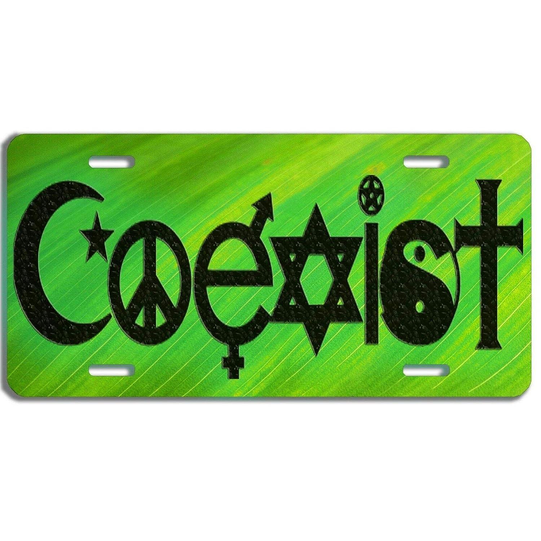 Flash Logo License Plate Car Tag Vanity Plate