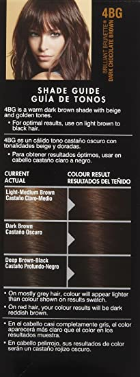 Amazon Com John Frieda Precision Foam Hair Colour Dark Chocolate Brown 4bg 2 Pk Beauty