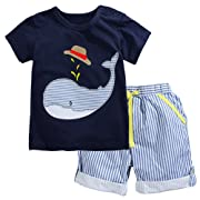 Fiream Little Boys' Cotton Clothing Short Baby Sets(2001TZ,18M)