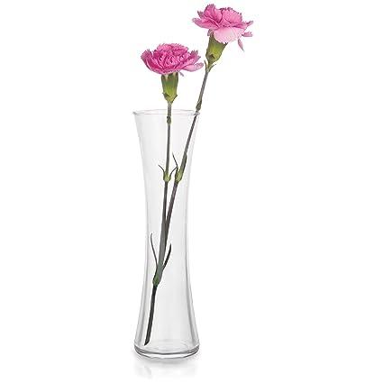 Amazon Libbey Sabrina 8 Piece 8 Inch Bud Vase Set Home Kitchen