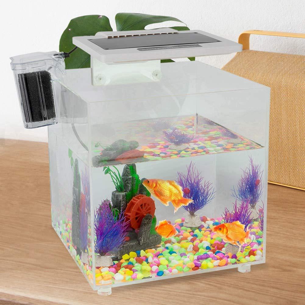 Pecera de Acrílico, Acuario con Luz led Filtro de Cascada Interno para el hogar y la Oficina, Capacidad de Agua: 15L: Amazon.es: Productos para mascotas
