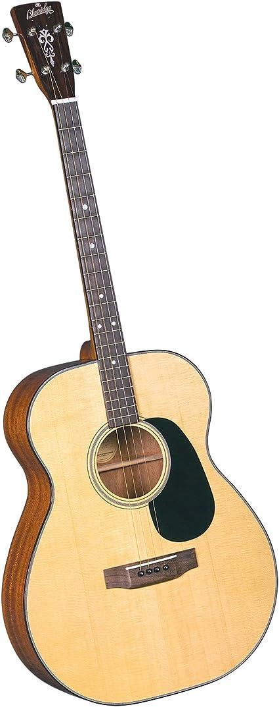 Blueridge Guitars BR-40T - Guitarra acústica, color azul: Amazon ...