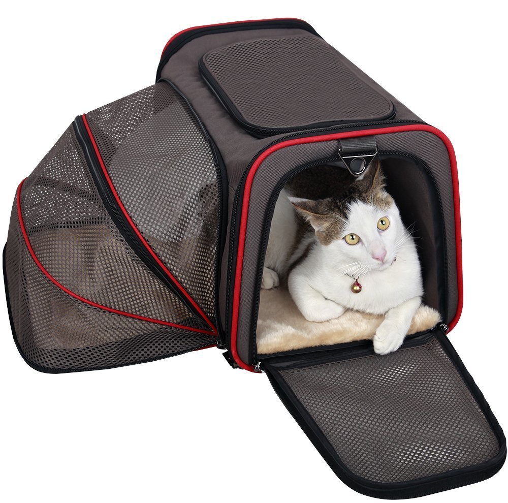 Petsfit 19''x12''x12'' Expandable Foldable Washable Travel Carrier, Not All Airline-Approved Pet Carrier Soft-sided