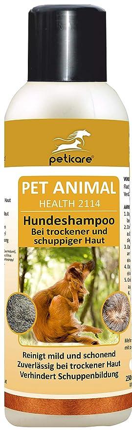 Peticare Spezial Shampoo Für Hunde Hochwirksame Dermatologische