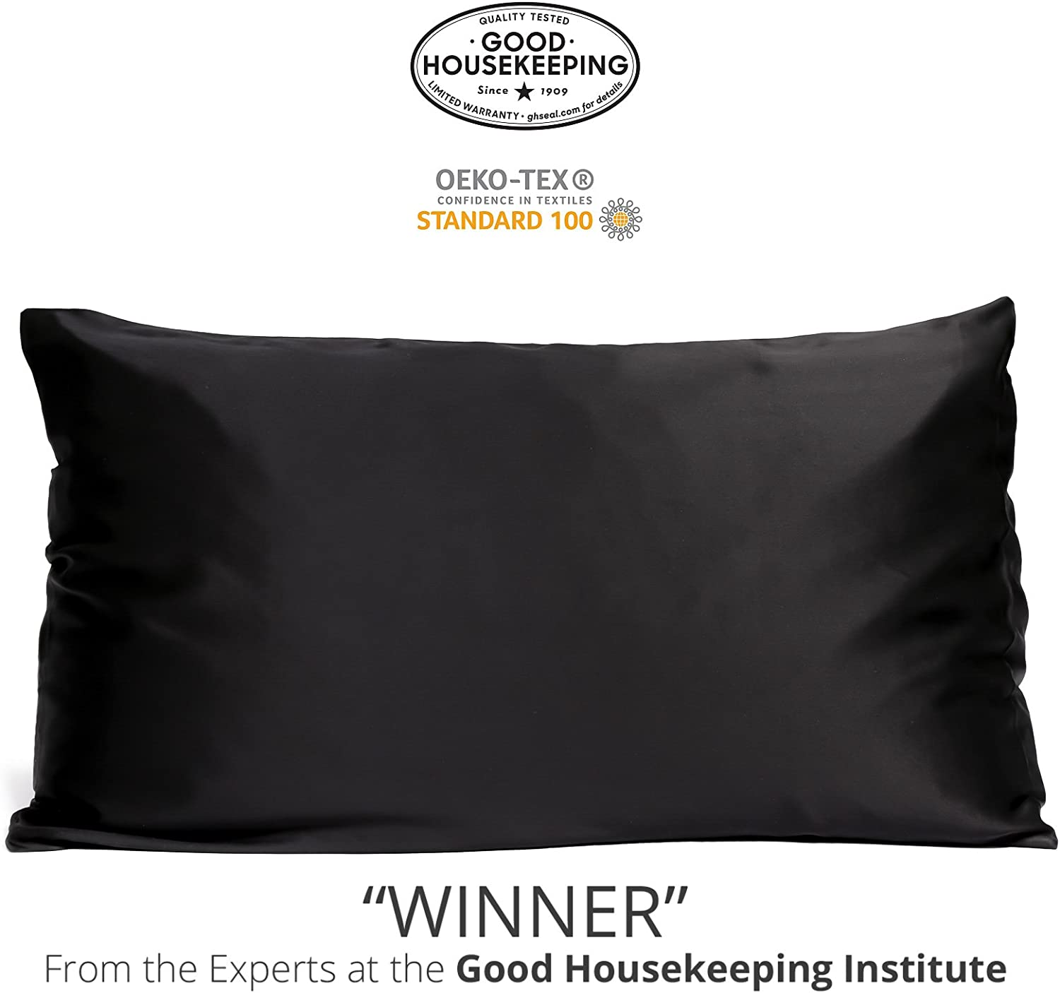 Fishers Finery 25mm 100% Pure Mulberry Silk Pillowcase Good Housekeeping Winner (Black, Queen)