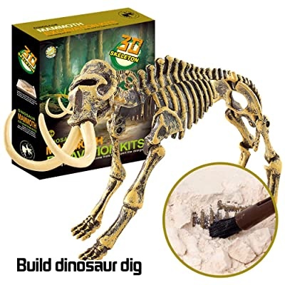 CreazyBee Dinosaur Fossil dig Toys, DIY Dinosaur Toys, Dino Dig Kit, Kids Science Education Dinosaur Fossil Assembly Kit Toys Gift (AS Show): Toys & Games