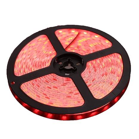 XKTTSUEERCRR 5 Meter 600LEDs luz rojo con piedras de cristal brillantes tira de luces 12 V