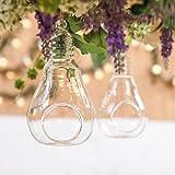 2 Vases en Verre Transparent Suspendu Forme Ampoule Edison pour Plantes Fleurs Décoration de Jardin Maison Mariage 14cm