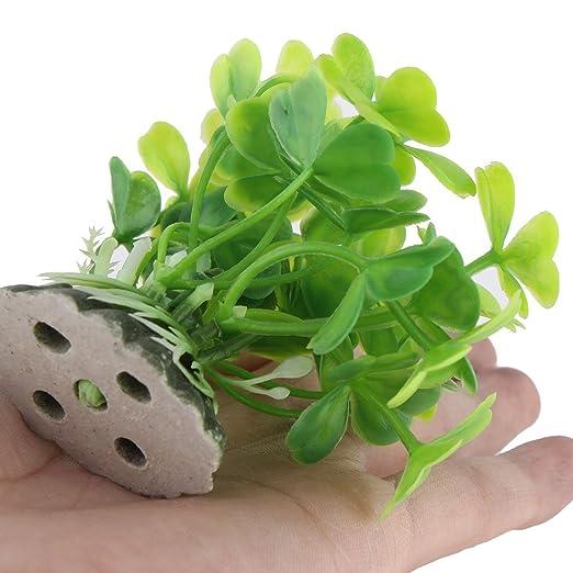 Amazon.com : eDealMax Ornamento planta acuario plástico del tanque de pescados Bajo el agua Artificial 6pcs Verde : Pet Supplies
