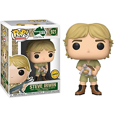 Funko Pop! TV: Crocodile Hunter - Steve Irwin with Turtle Chase: Toys & Games