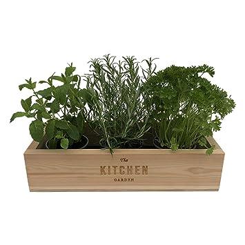 The Designer S Treat Kitchen Herb Garden Handmade Wooden