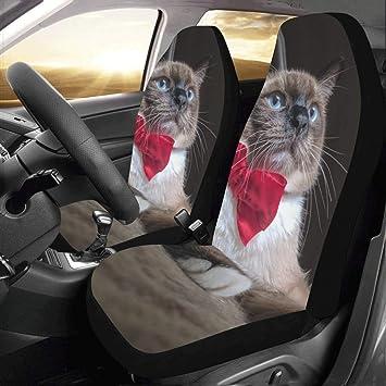Amazon.com: Bow Tie Cute Cat Custom Nuevo Ajuste Universal ...