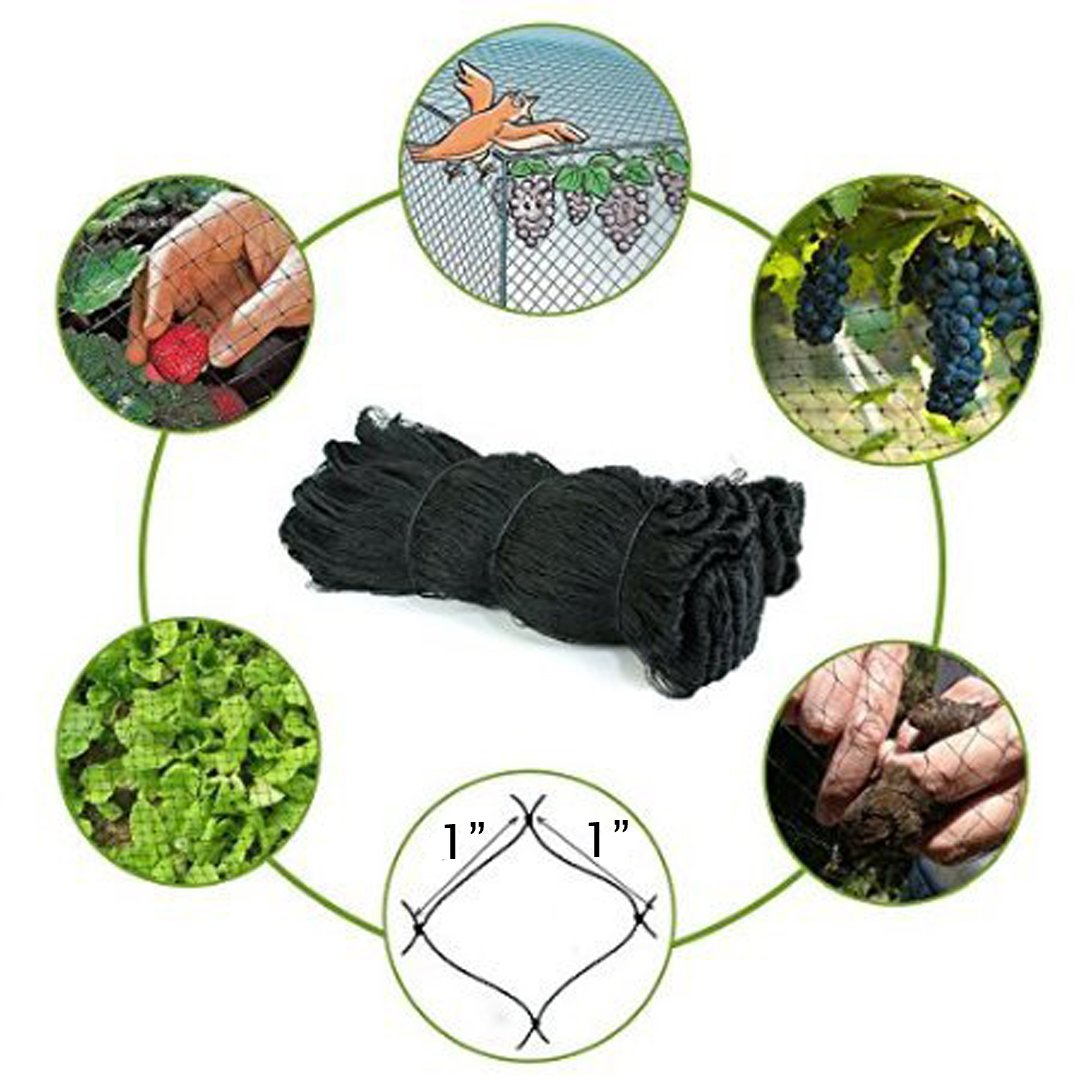 25' X 50' or 50' X 50' Net Netting for Bird Poultry Aviary Game Pens New 1'' Square Mesh Size (50' x 50')