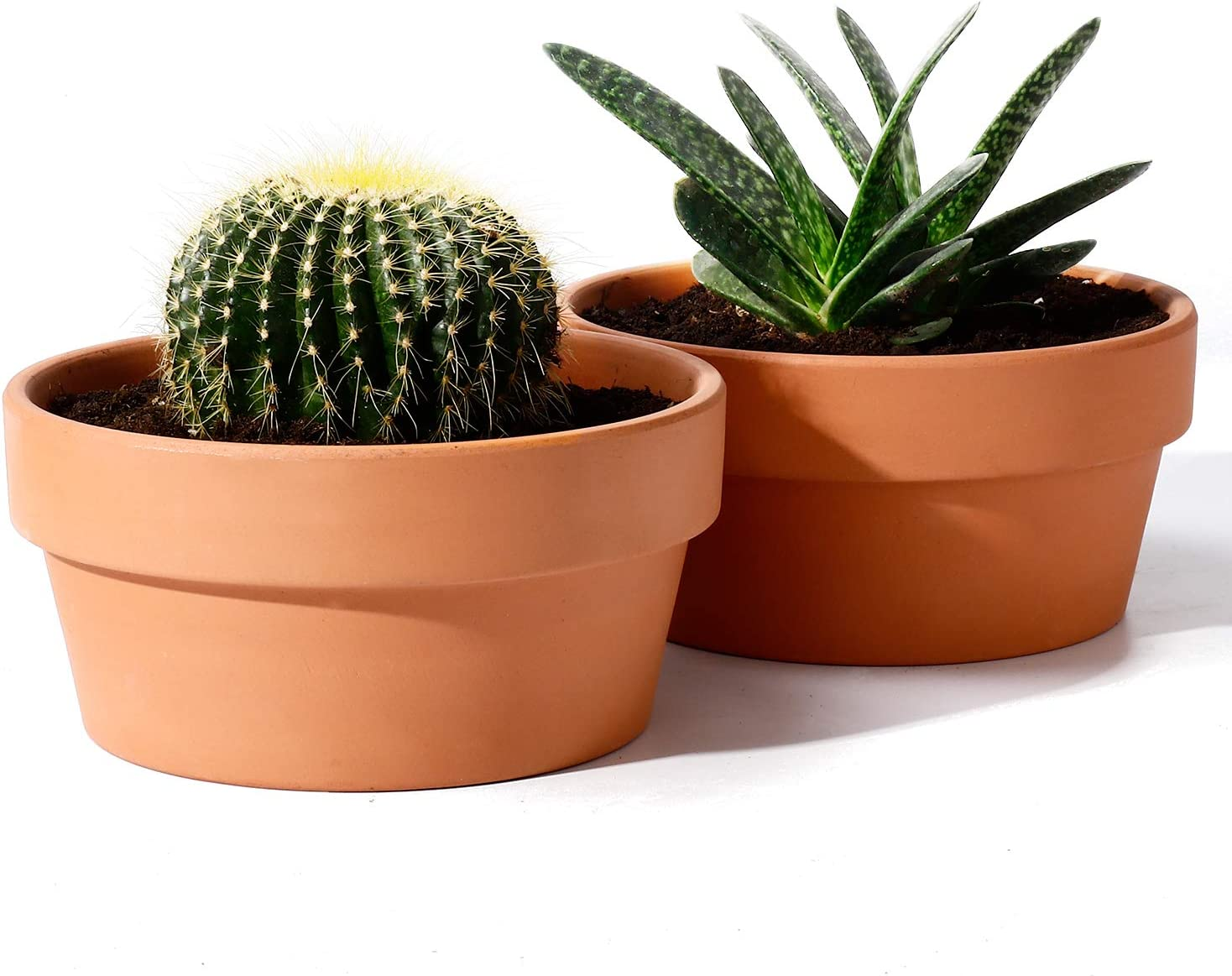 POTEY Terracotta Shallow Planters for Succulent - 6.1 Inch Cactus Plant Containers Indoor Garden Bonsai Pots with Drainage Hole - Set of 2, Unglazed